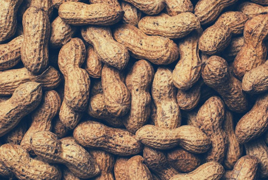 Peanut+Factory+Worker+Discovers+Allergy+in+Worst+Way+Possible